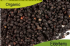 Organic Elderberry 100gm